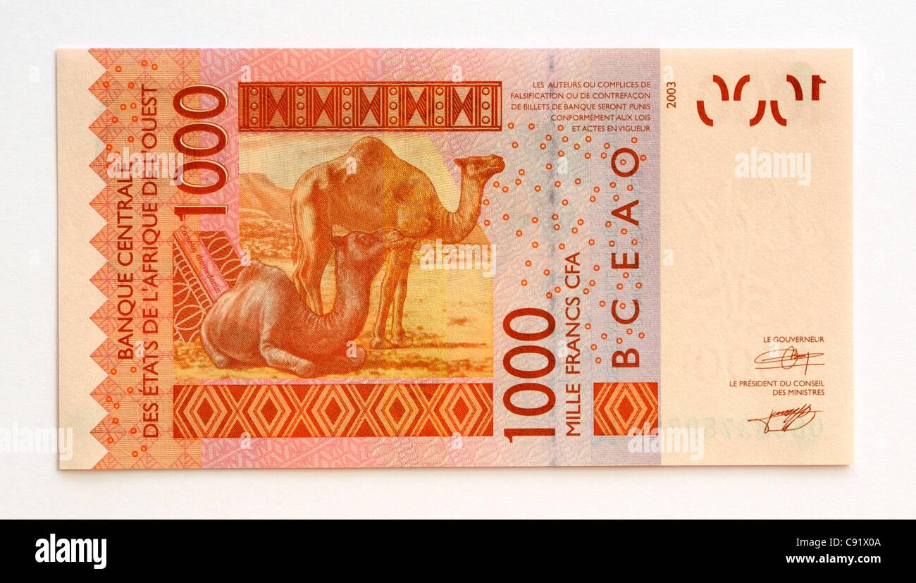 Sénégal 1000 Un millier de billets de banque en francs. Photo Stock