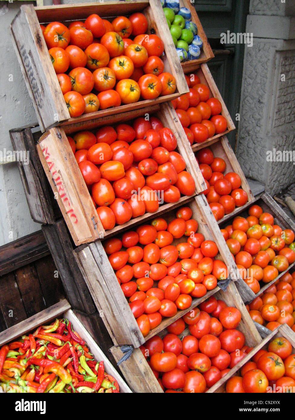 Montevideo, Montevideo, Uruguay l'affichage des tomates rouges Photo Stock