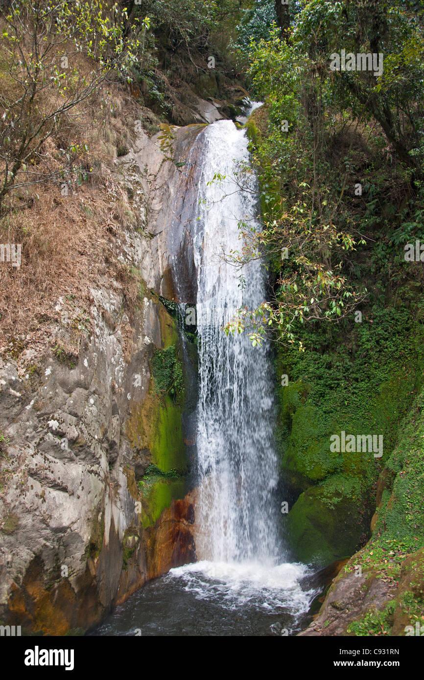Une chute près de Trashi Yangstze. Près de 80 % du Bhoutan est encore boisée en raison de la Photo Stock
