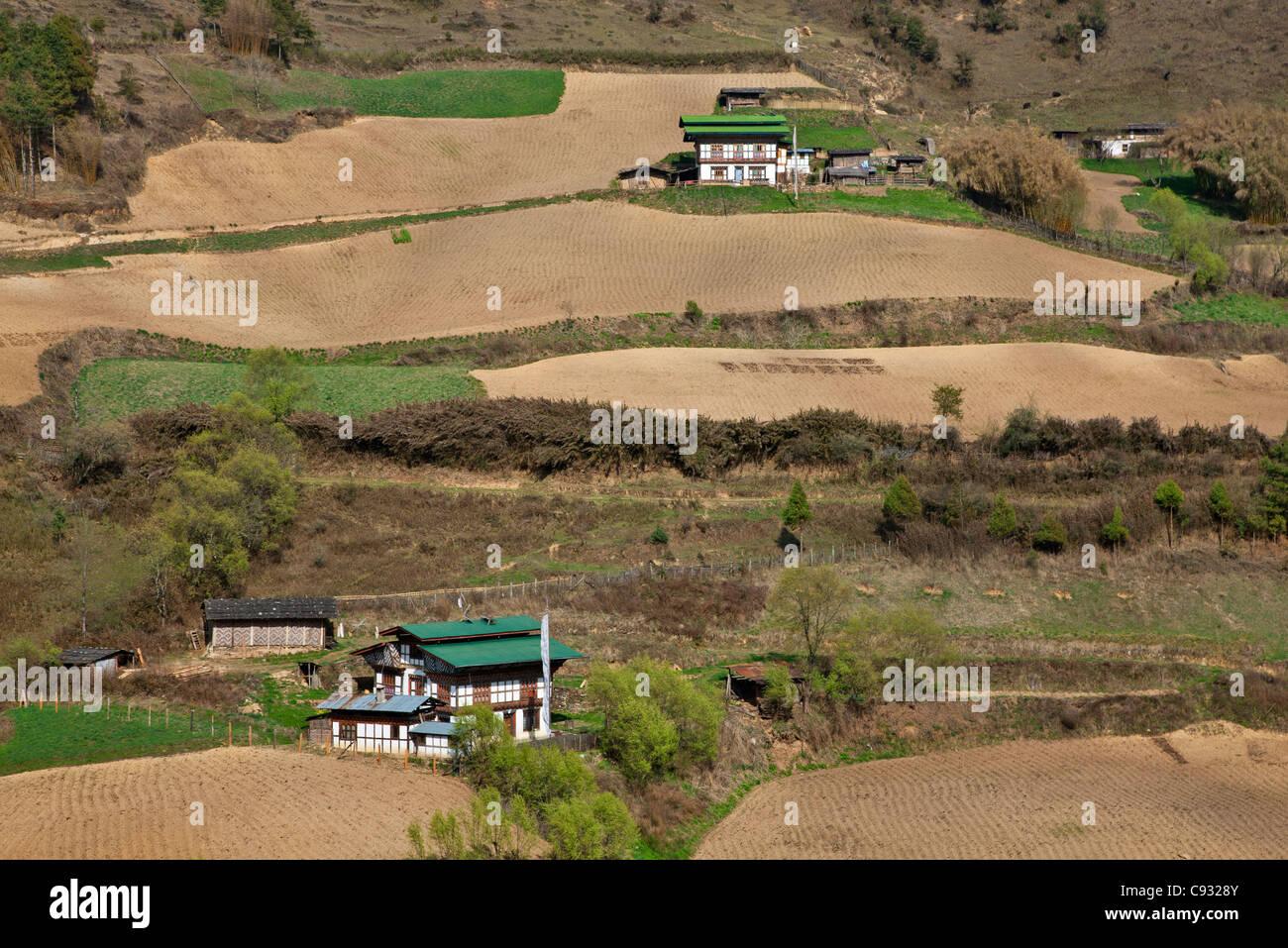 Les fermes de la vallée de Phobjikha fertile. Photo Stock