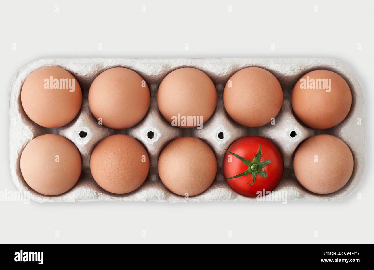 Boîte en carton contenant 9 oeufs de poule marron et une seule tomate rouge, signifiant un odd one out concept Photo Stock