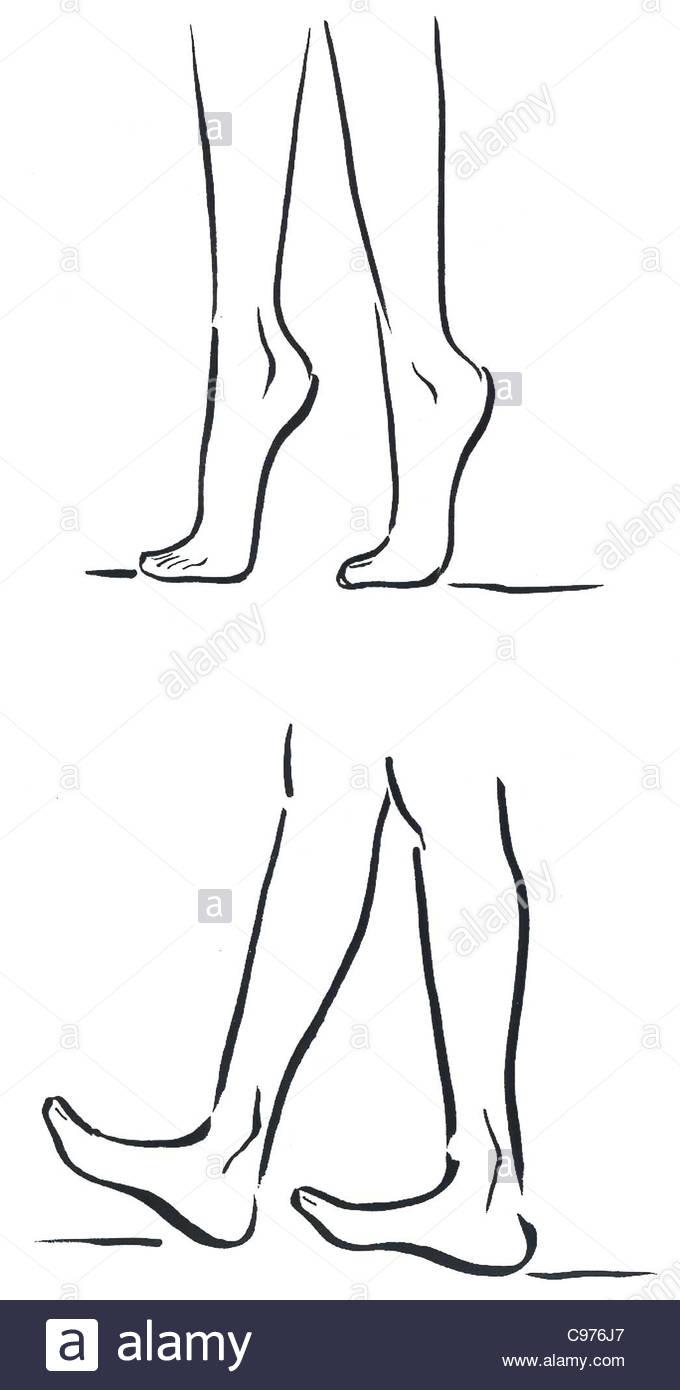 Les jambes de la série gymnastique Yoga Le yoga Yoga Cours de yoga ...