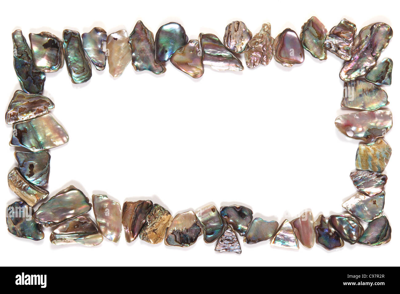 Paua coquillages frame Photo Stock
