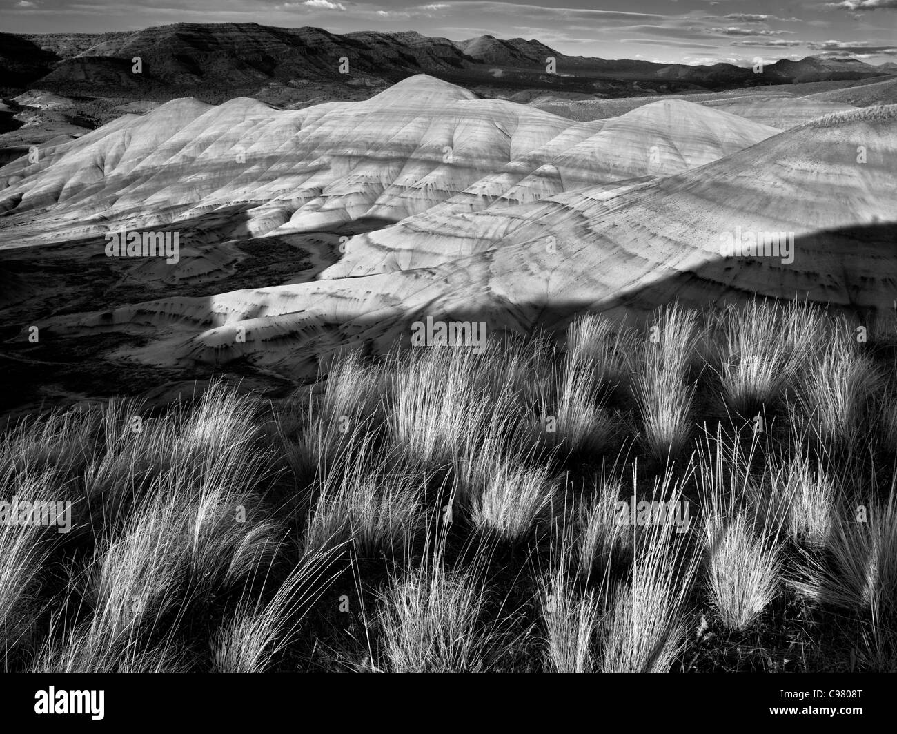 L'herbe et collines peintes. John Day Fossil jumeaux National Monument. Oregon Photo Stock