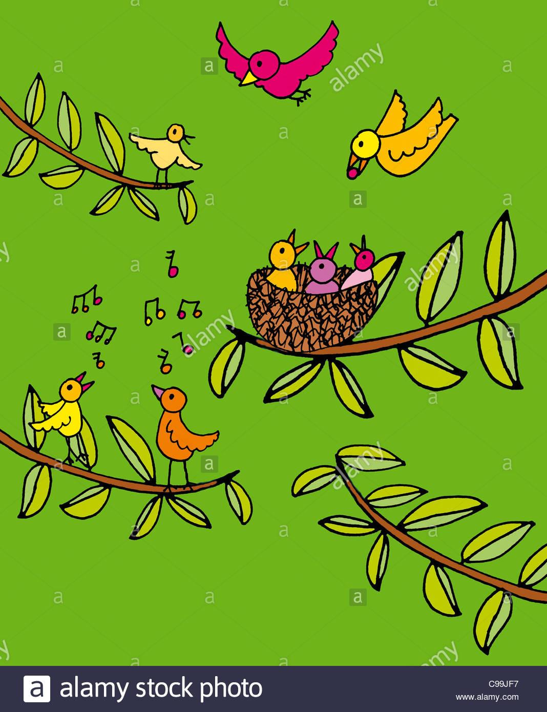 De nombreux oiseaux nichent au printemps le chant des oiseaux animaux amour NESTWAERME Vogel Symbolisme des oeufs Photo Stock