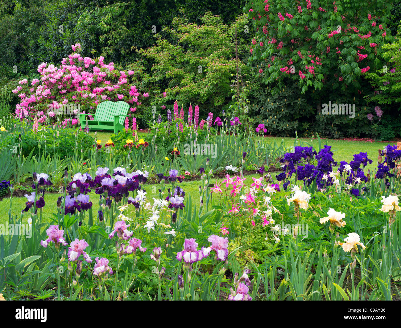Iris et autres plantes à fleurs avec chaise à Schriners Jardin d'Iris. Oregon Photo Stock