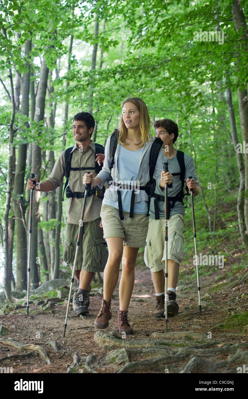 Les amis de la randonnée dans les bois Banque D'Images
