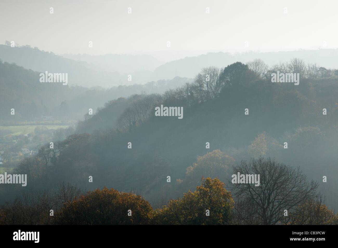 Le Ton Vallée à Waterrow près de Wiveliscombe. Le Somerset. L'Angleterre. UK. Photo Stock