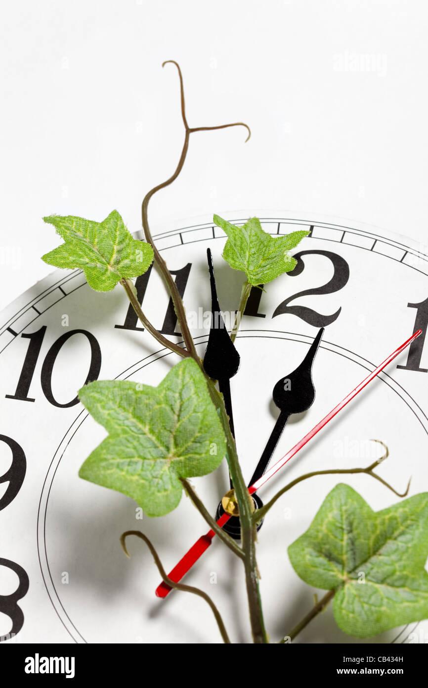 Réveil et Ivy, concept de temps Photo Stock