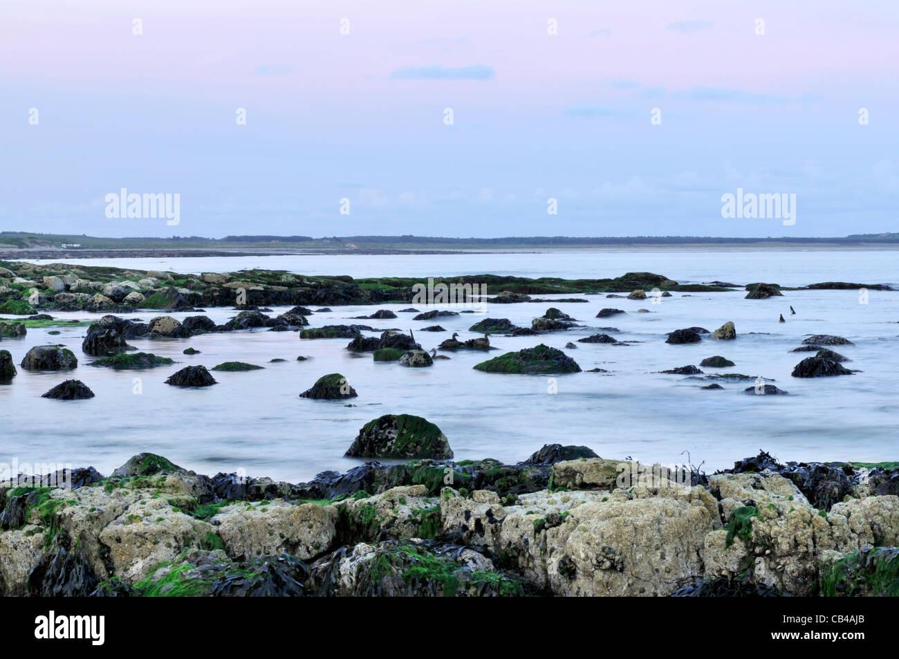 Avis de Largo Bay prises à la tombée de la plage à moindre Largo dans l'East Neuk de Fife, en Photo Stock