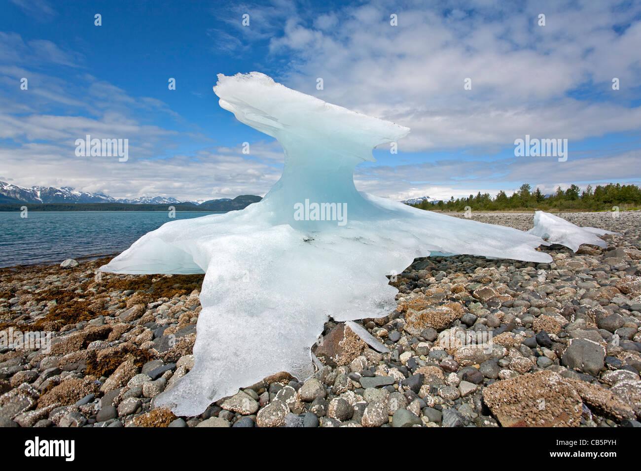Iceberg piégées sur le rivage à marée basse. Muir Inlet. Glacier Bay. De l'Alaska. USA Photo Stock