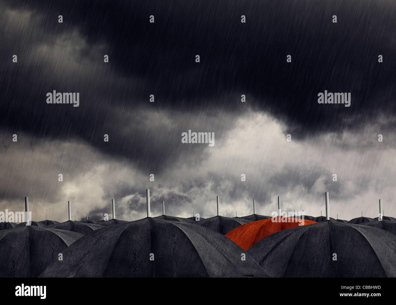 Parapluie rouge avec noir parapluies Photo Stock