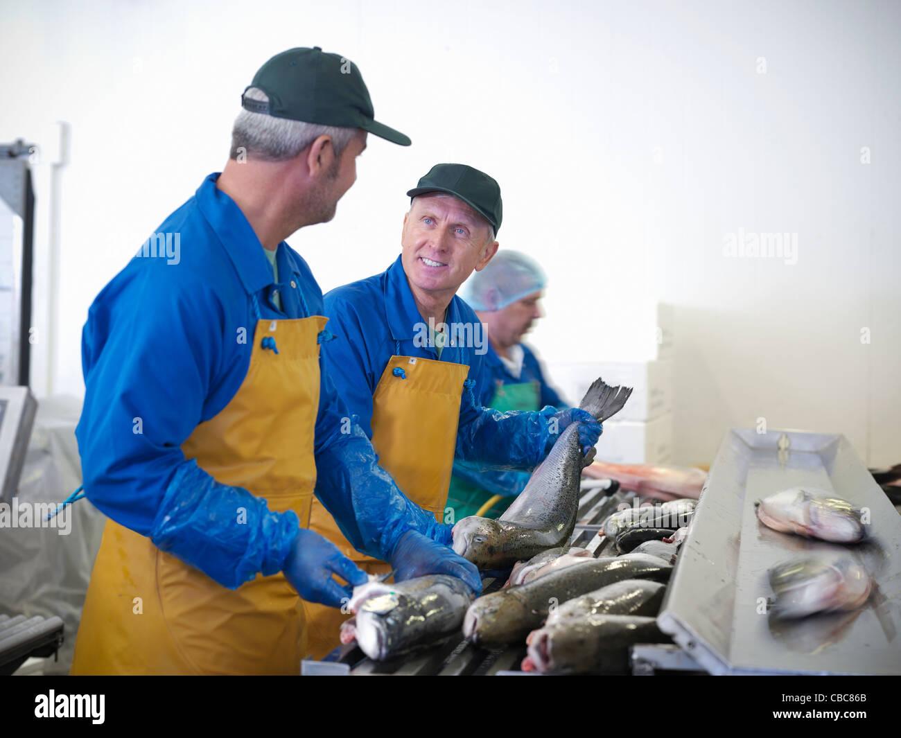 Les poissonniers avec prises de la journée Photo Stock