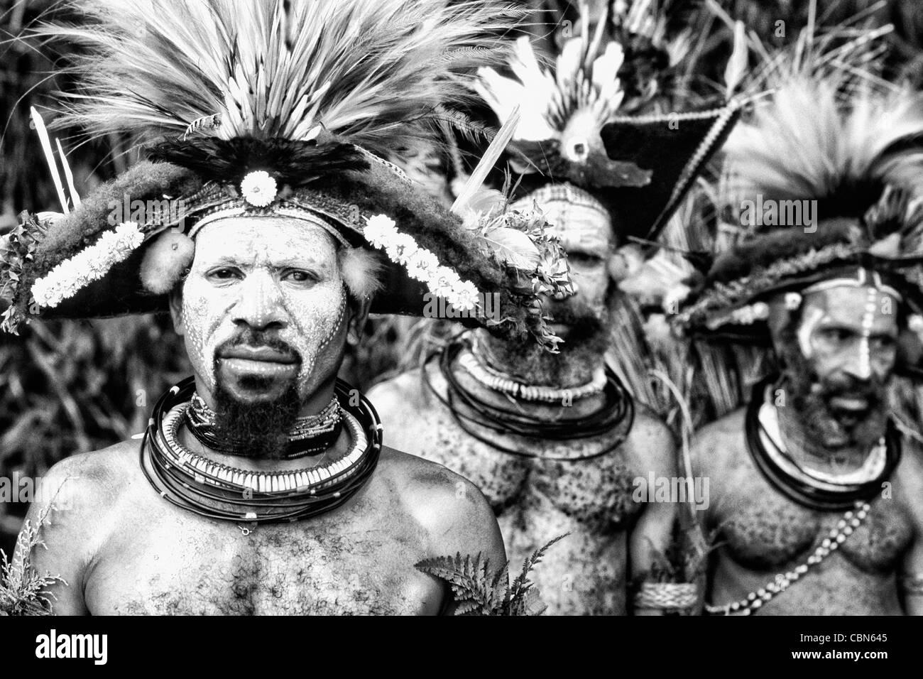 Huli Wigmen colorés de la Papouasie-Nouvelle-Guinée Photo Stock