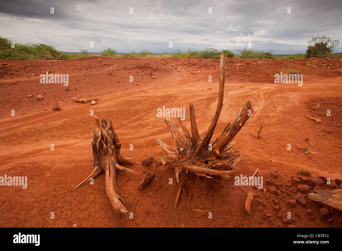 Le sol érodé en Sarigua national park (désert) dans la province de Herrera, République du Panama. Photo Stock