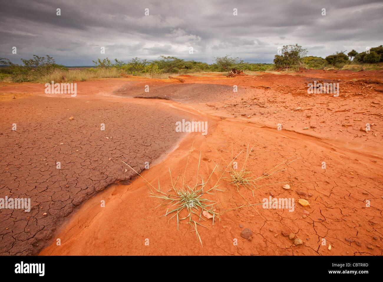 Sarigua national park (désert) dans la province de Herrera, République du Panama. Photo Stock