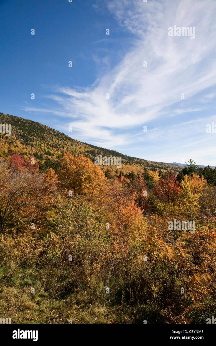 Scènes de la White Mountain National Forest de Bear Notch Road, New Hampshire. Photo Stock