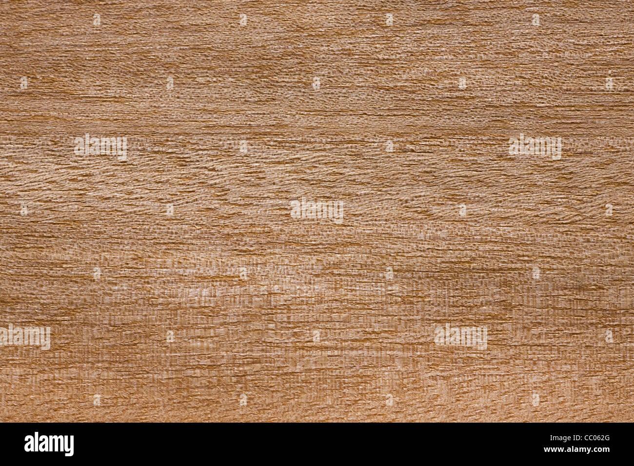 Grain du bois d'Anegre / Asamfona Aningre / / Kali / tonewood (Aningeria altissima), l'Afrique Photo Stock
