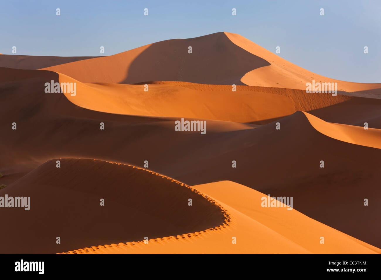 Dunes de sable, le Parc National Namib Naukluft, Namibie Photo Stock
