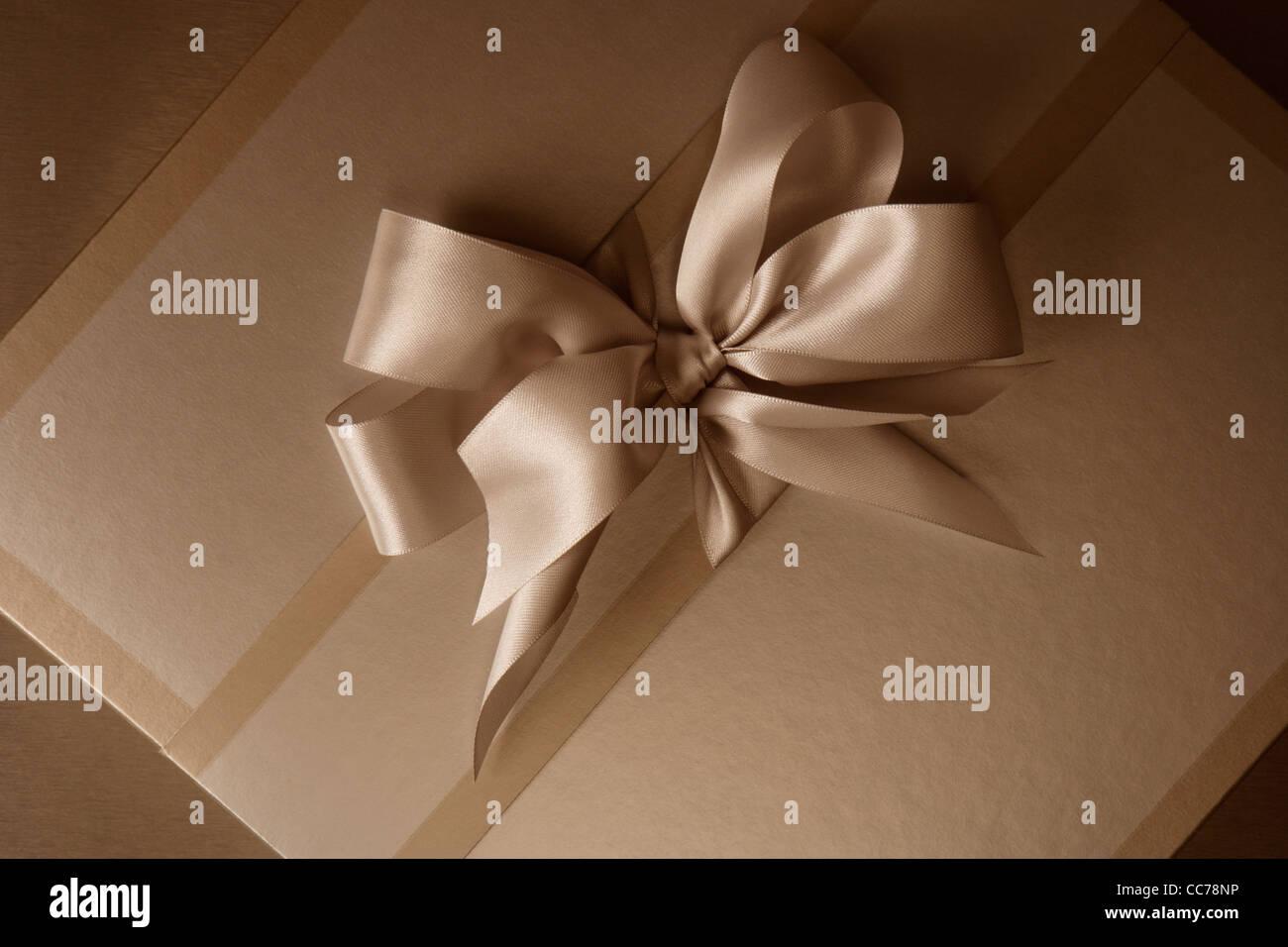 Boîte cadeau élégante en sépia avec bel arc Photo Stock