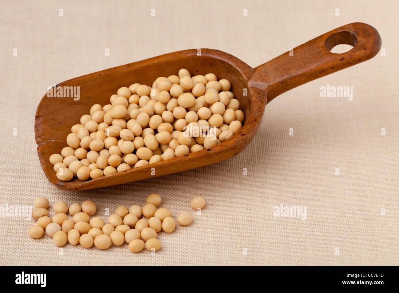 Le soja jaune sur une pelle en bois rustique contre cirée Photo Stock