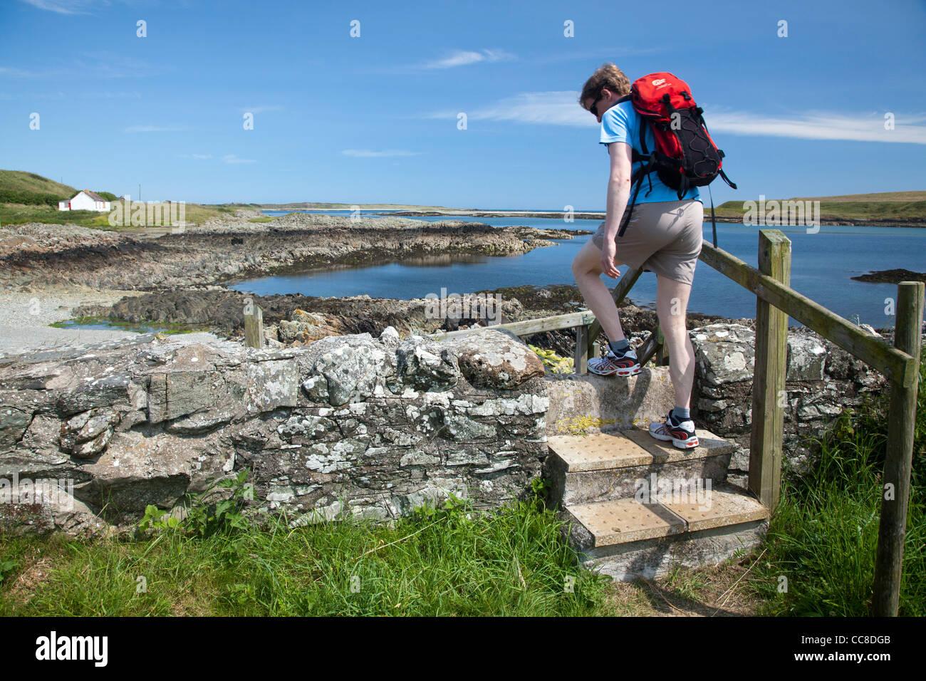 Walker crossing un stile sur le chemin côtier, Ballyhornan Lecale Way, comté de Down, Irlande du Nord. Banque D'Images