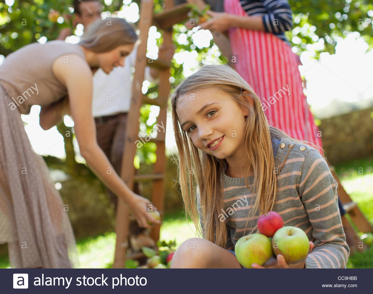 Portrait of smiling girl holding apples in orchard Photo Stock
