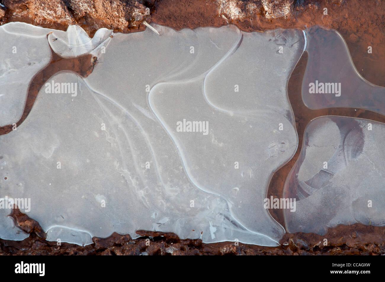 Flaque d'eau gelée dans la boue Photo Stock