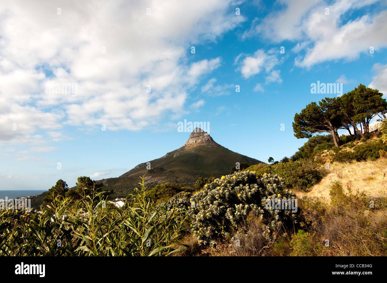Tête de Lion mountain, Cape Town, Afrique du Sud Photo Stock