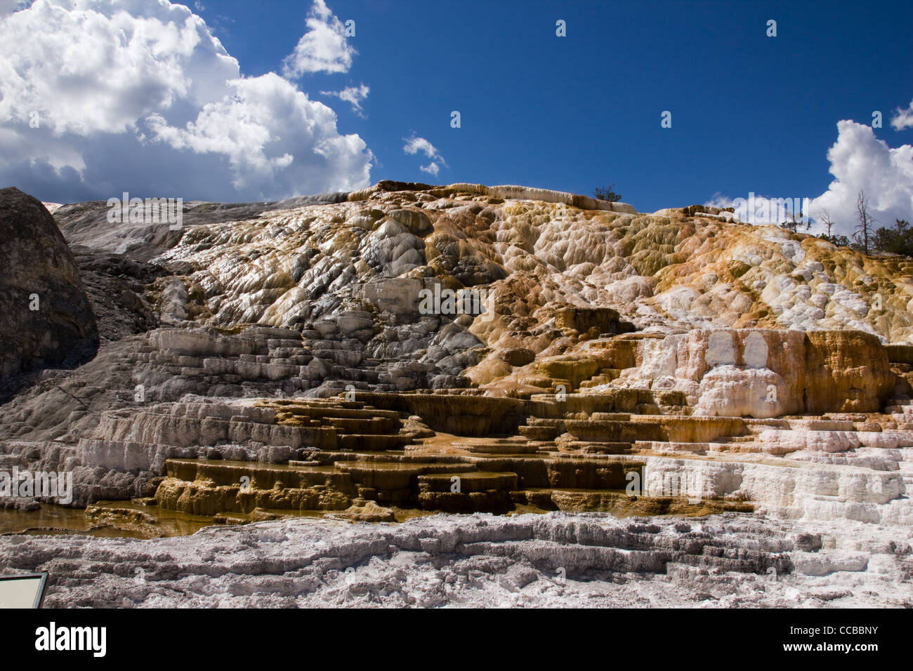 C'est l'une des terrasses à Mammoth Hot Springs In Yellowstone Photo Stock