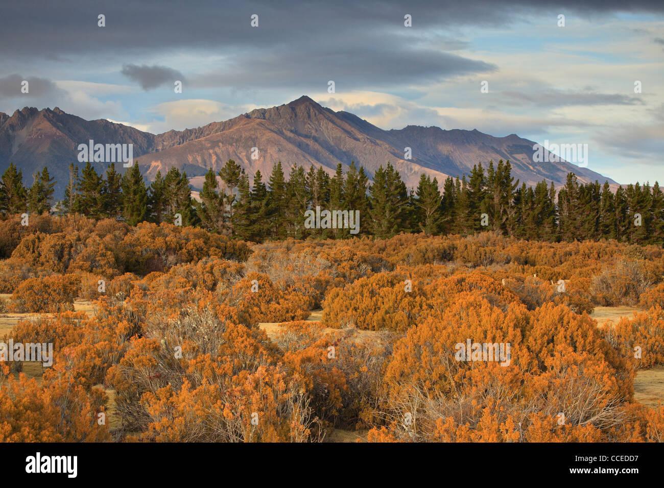 Montagnes près de Te Anau, vu de l'espace Sauvage Réserve scientifique Photo Stock