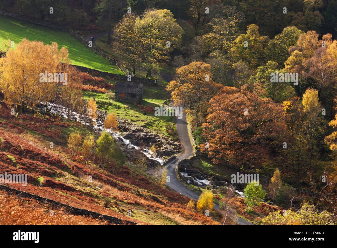 Country lane passant sur Barrow Beck sur Ashness Bridge, Lake District, Cumbria, Angleterre. L'automne (novembre) Photo Stock