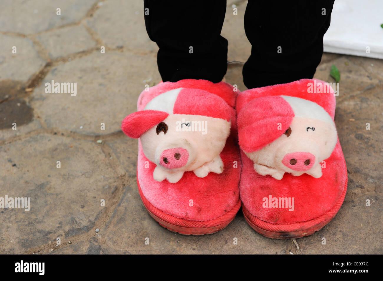 Asie Laos, d'Oudomxay négociant fruits chinois avec funny plush slipper avec deux tête de cochon Photo Stock