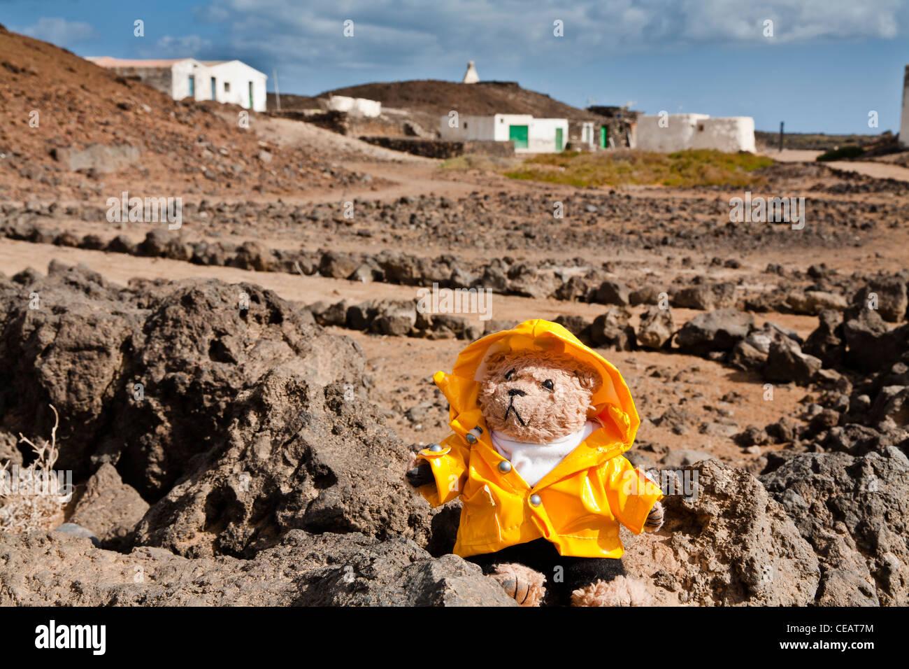 Beni, un ours en peluche, l'extérieur du village d'peurtito sur l'île de Lobos, Fuerteventura Photo Stock