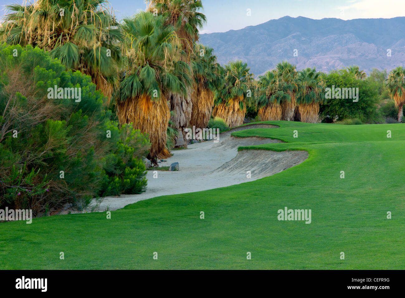 L'aménagement paysager autour de Desert Willow Golf Resort. Palm Desert, Californie Photo Stock