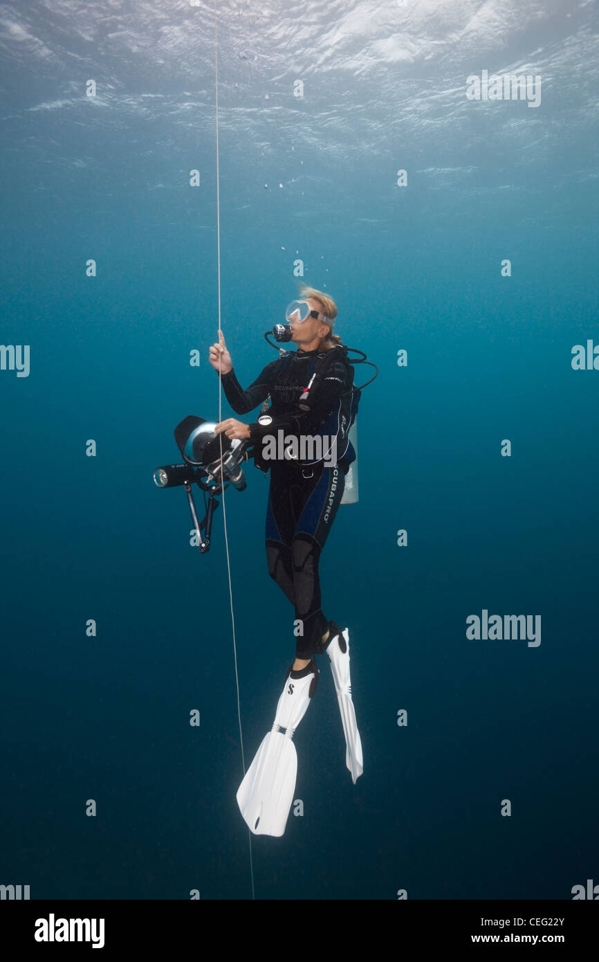 Scuba Diver faisant la butée de sécurité avec une bouée, l'atoll de Baa, Maldives, océan Photo Stock