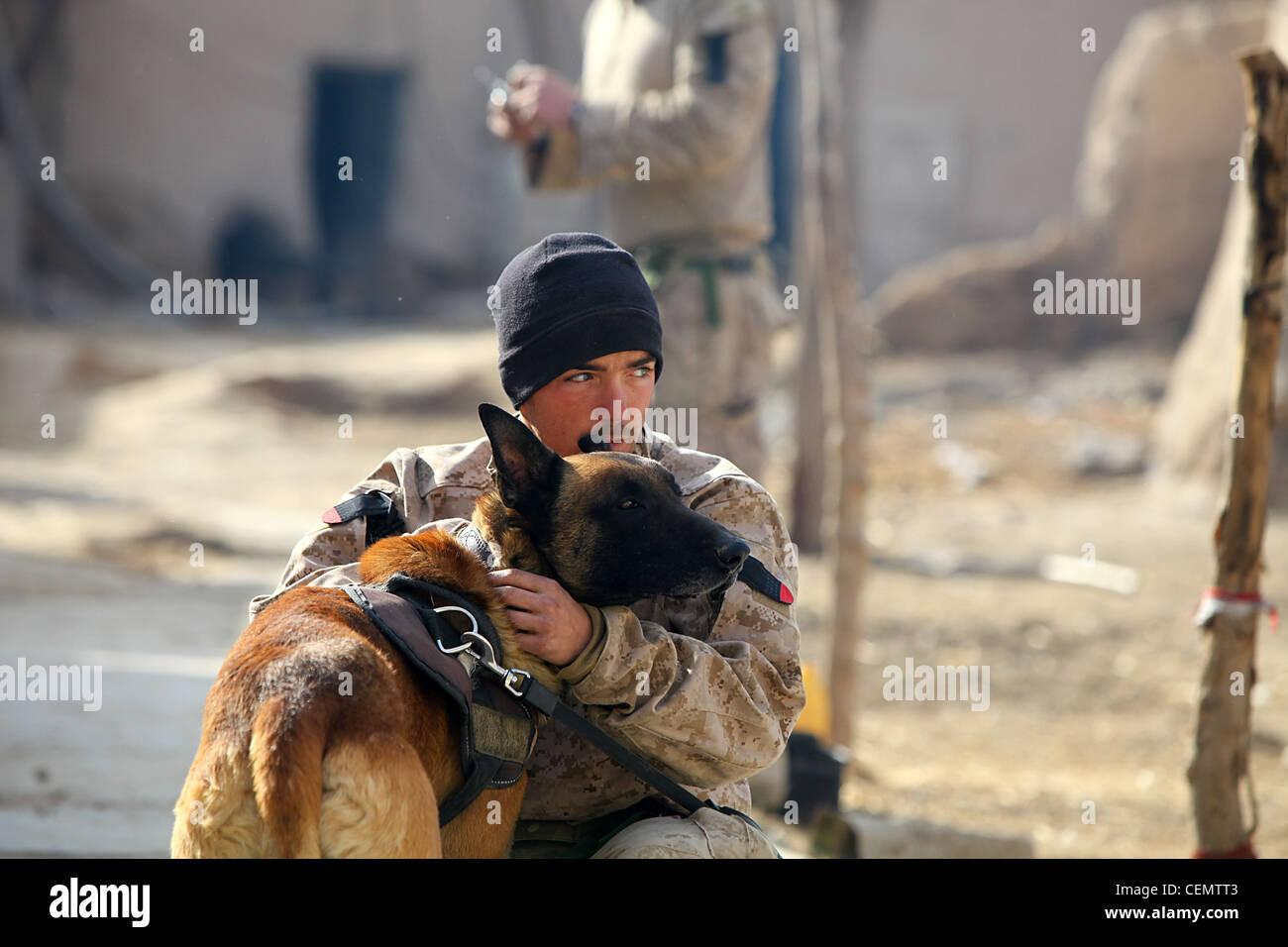 Le caporal derrick Magee, 21 ans, conducteur de chien avec 2e bataillon, 4e marines, de Vineland, N.J. prend soin Photo Stock