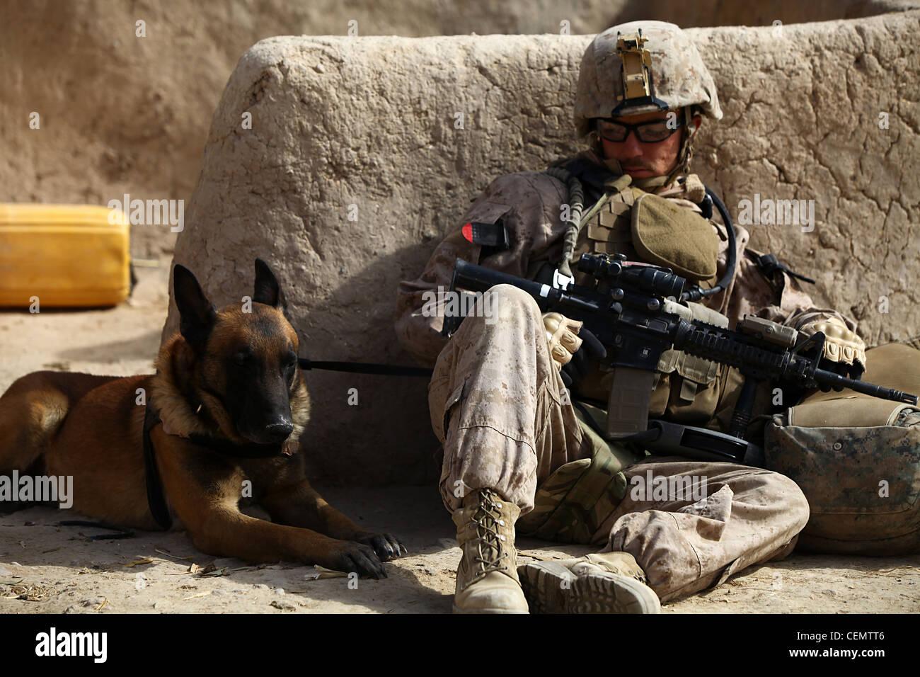 Le caporal derrick Magee, 21 ans, conducteur de chien avec 2e bataillon, 4e marines, de Vineland, N.J. et son chien, Photo Stock