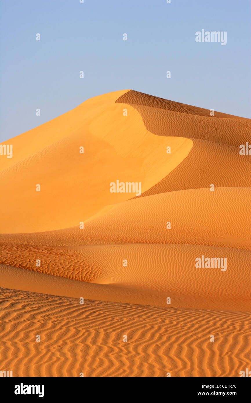 Un paysage de dunes dans le Rub Al Khali ou quart vide. Les stocks de l'Oman, l'Arabie saoudite, les Émirats Photo Stock