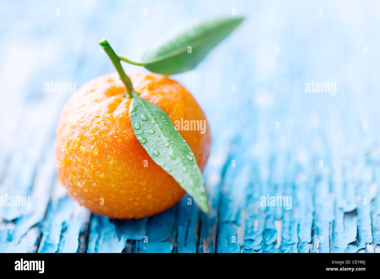 Mandarin Photo Stock