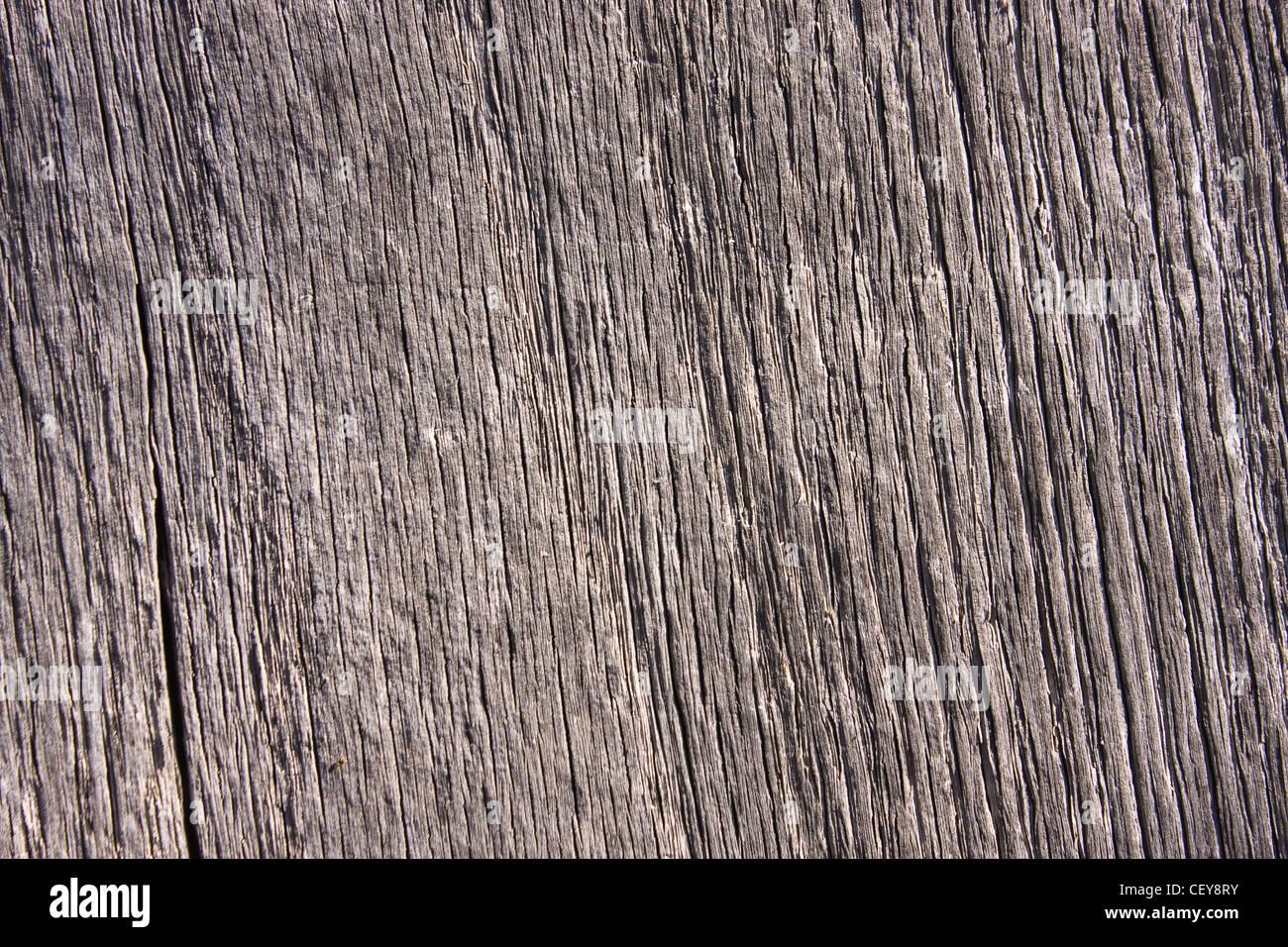 La texture d'un bois, de détails Photo Stock