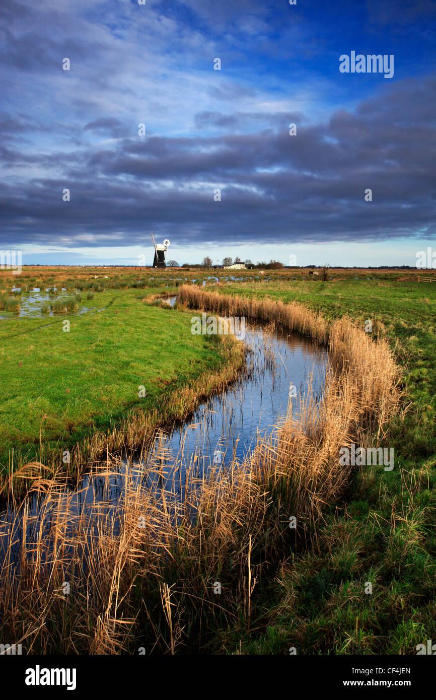 Un petit canal d'eau bordée de roseaux menant à moutons moulin sur les Norfolk Broads. Photo Stock