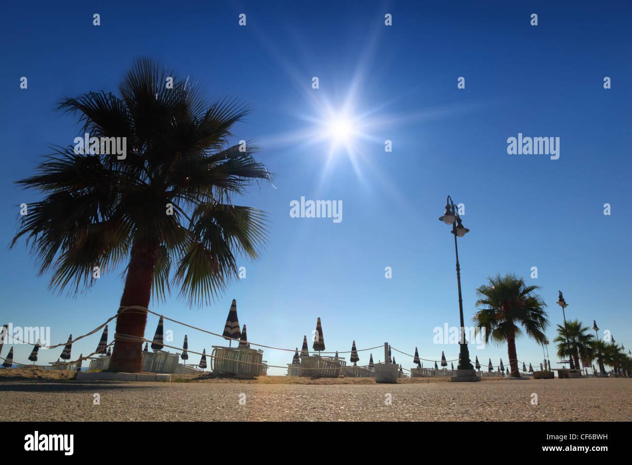 Chemin de béton avec des palmiers sur la plage avec parasols et transats, soleil et ciel sans nuages Photo Stock