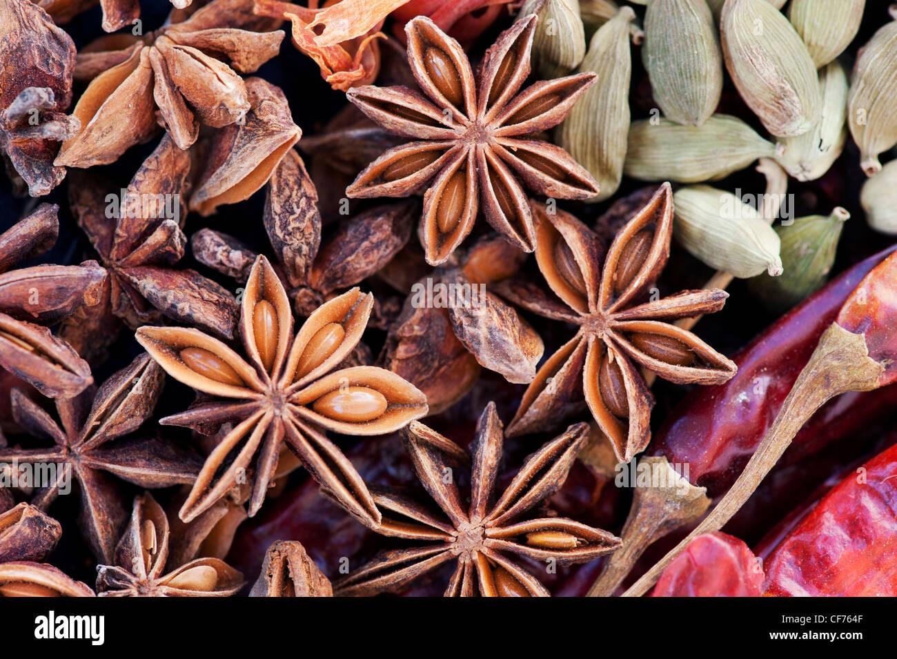 La cuisine des épices indiennes. Mise à plat de la photographie ci-dessus. Banque D'Images