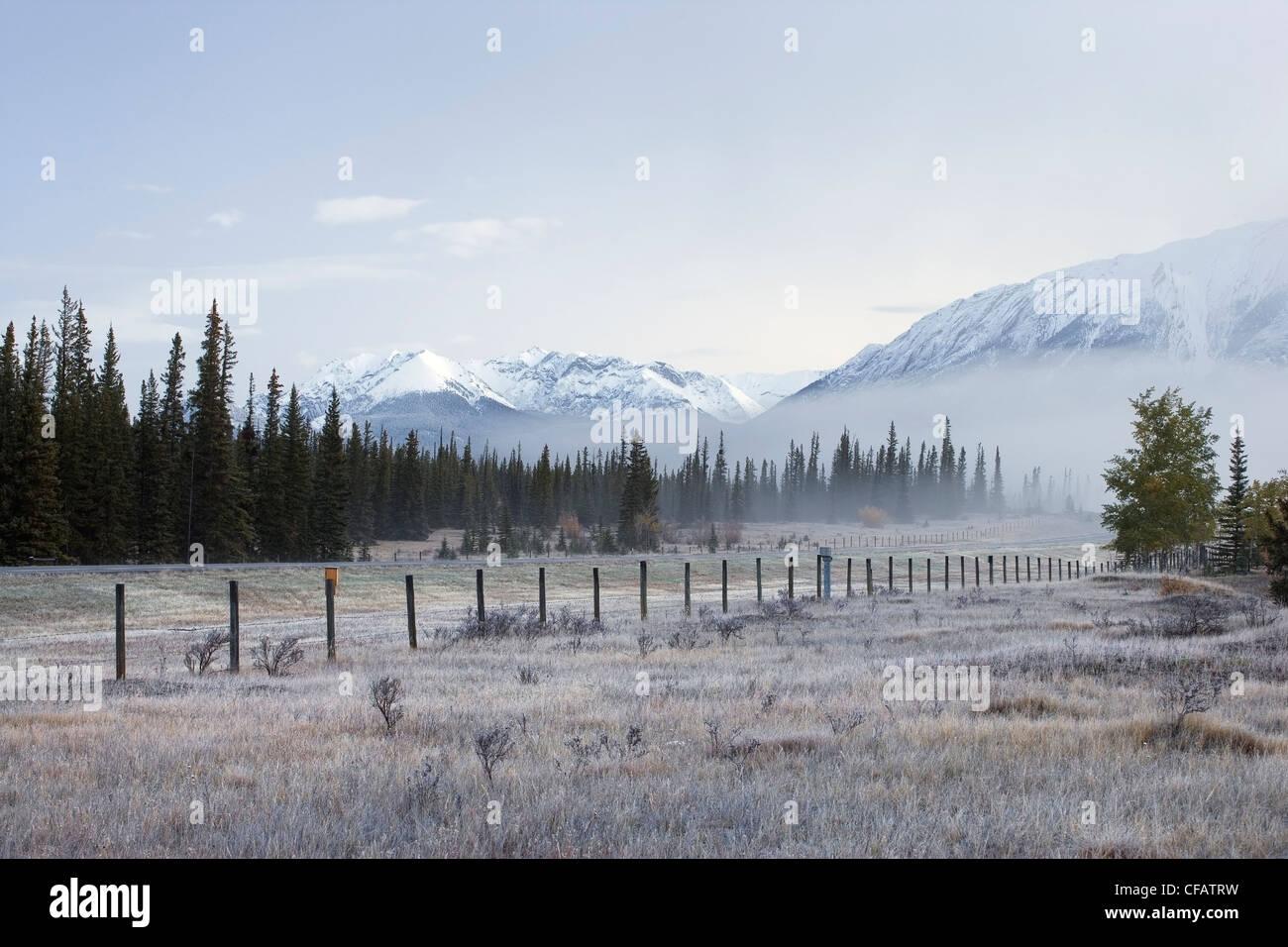 Ligne de clôture le long de la réserve écologique des plaines de Kootenay, Bighorn Wildlands, Alberta, Photo Stock