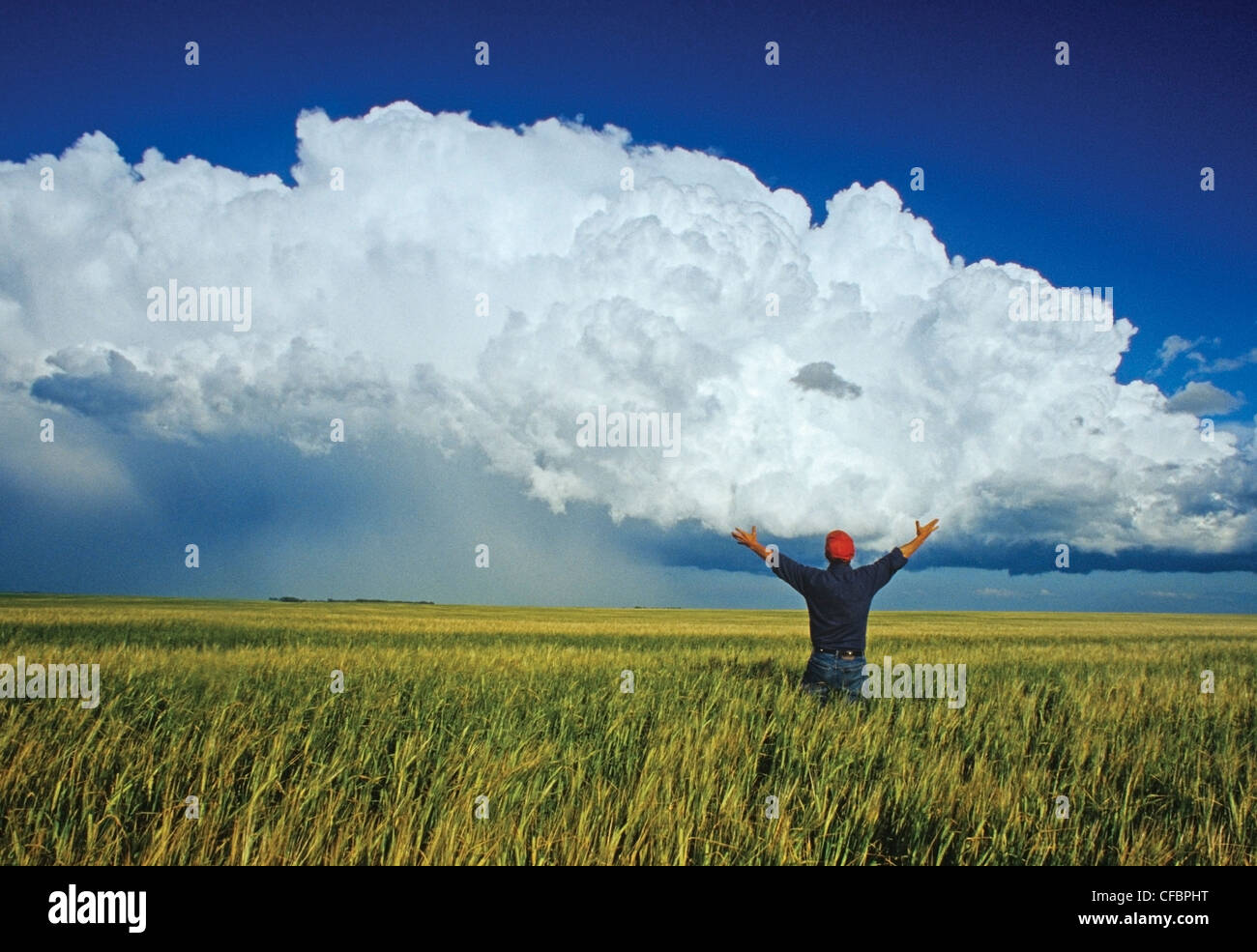 Un agriculteur donne sur un champ d'orge avec un cumulonimbus en arrière-plan de masse près de Bromhead, Photo Stock