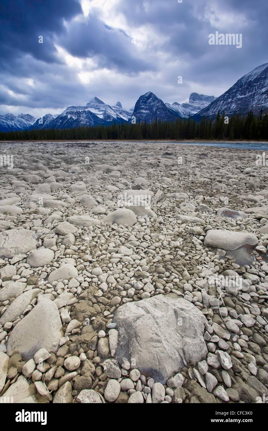 Riverbed rocky à sec de la rivière Athabasca Athabasca, gamme en arrière-plan. Le Parc National Jasper, Photo Stock