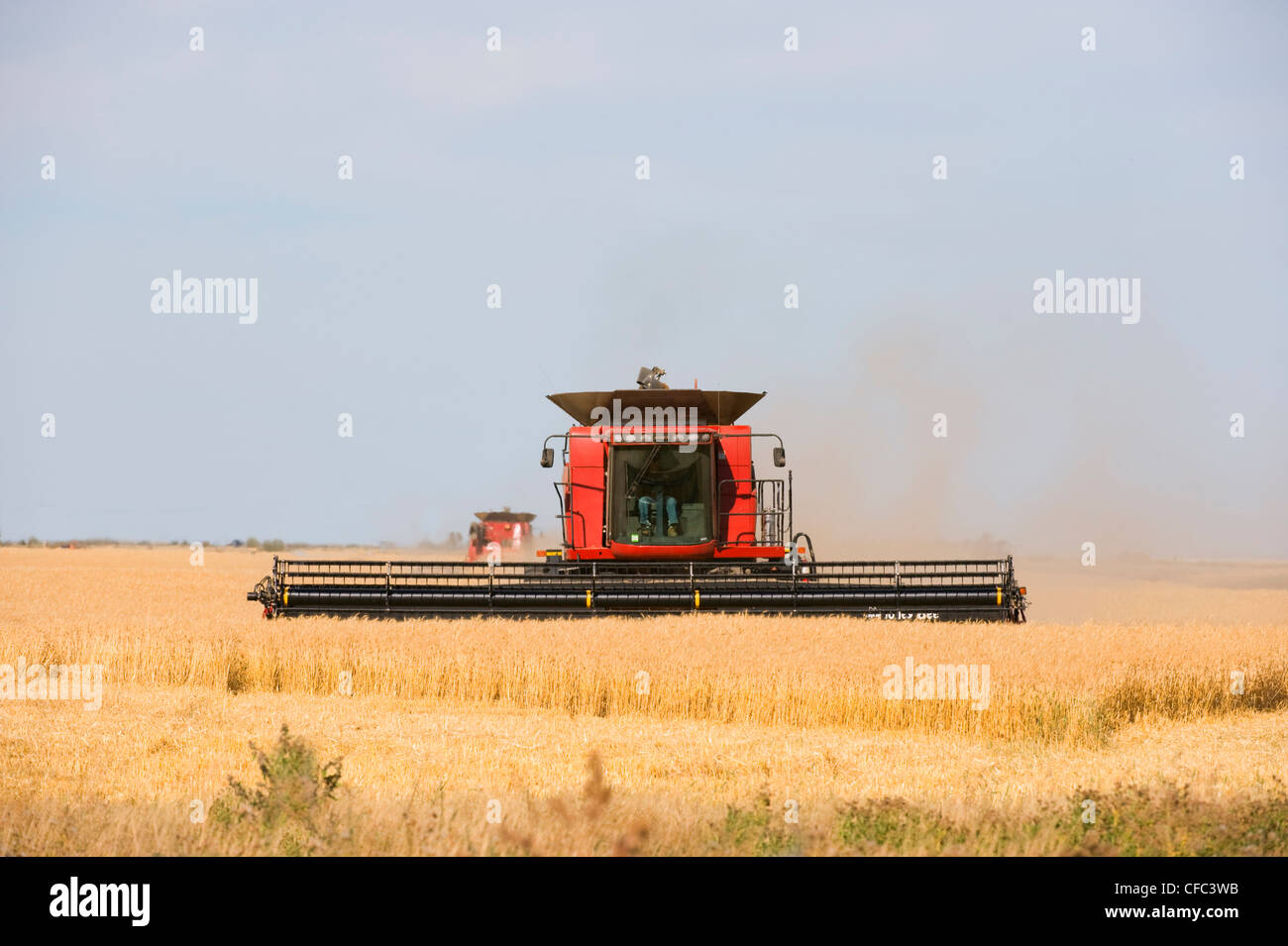 Combinant les agriculteurs pourraient utiliser propre moissonneuse-batteuse Photo Stock