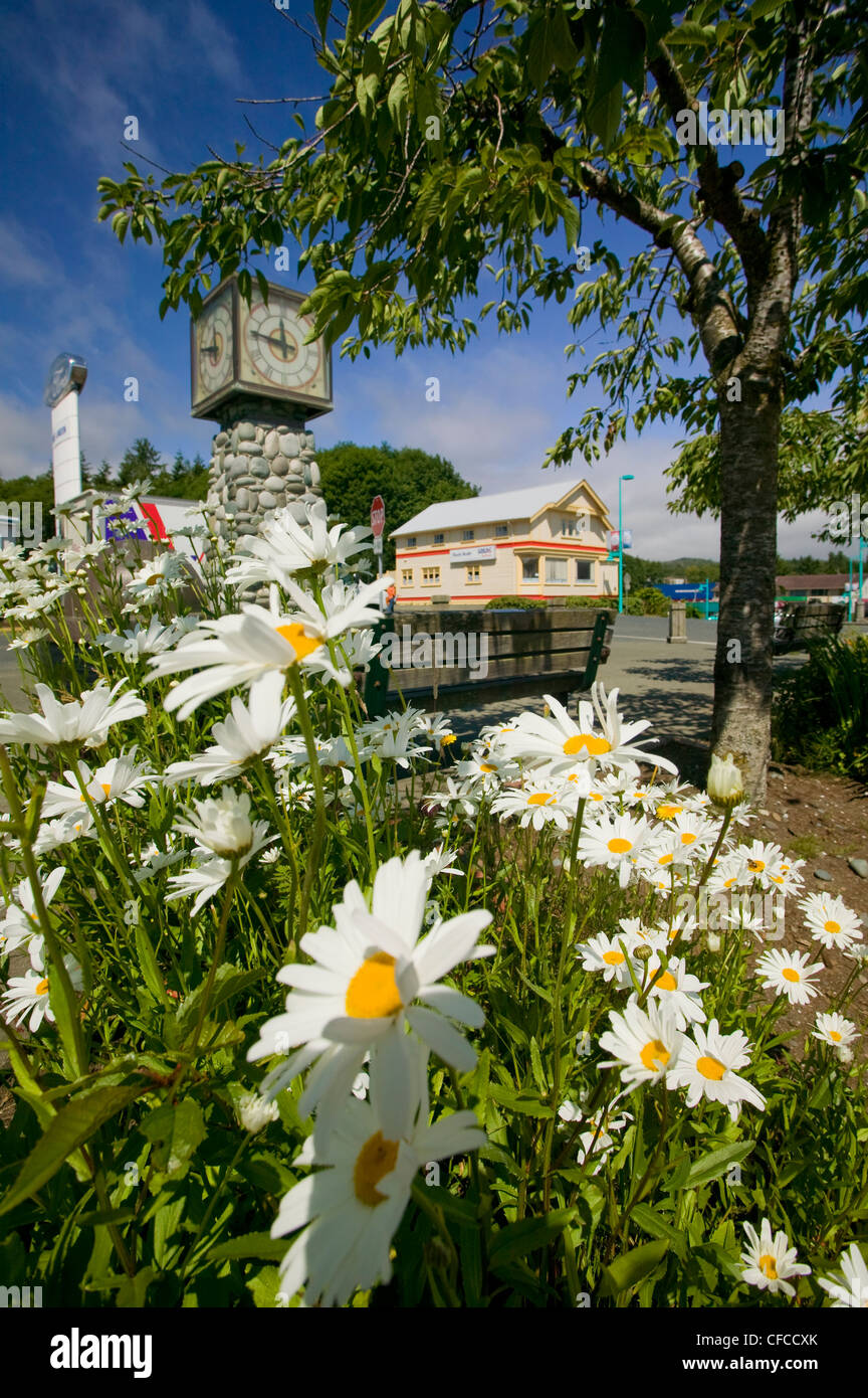 Les marguerites près de town clock souffler le vent le long de Market Photo Stock