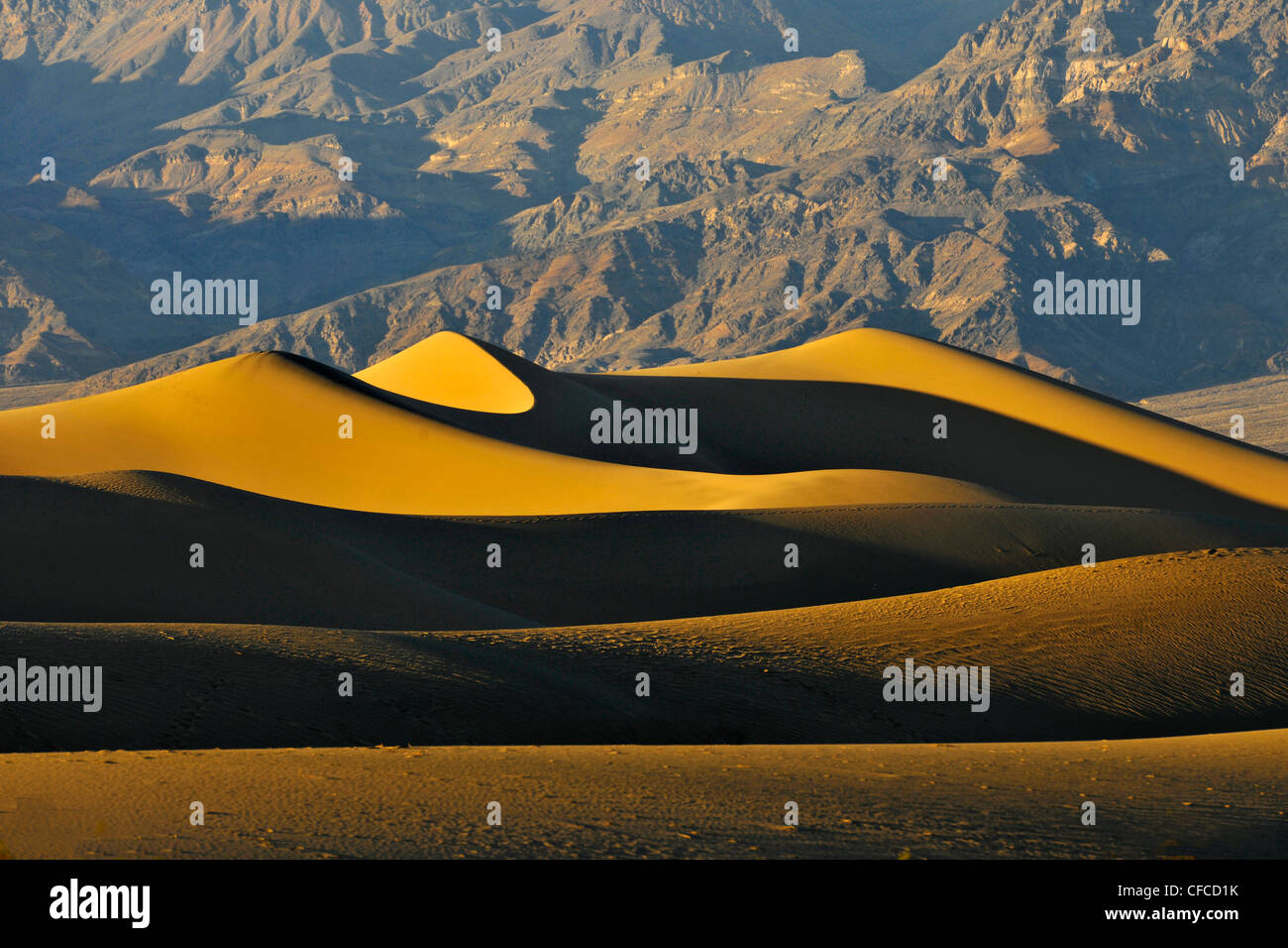 Dunes de sable, Stovepipe Wells, Death Valley National Park, la plus chaude et la plus sèche des parcs nationaux Photo Stock